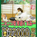 【夏目友人帳】ニャンコ先生巨ぐるみー高額買取!!【酒々井店】